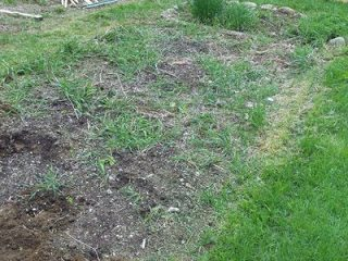 Introduction: Spring Awakening and Square Foot Gardens