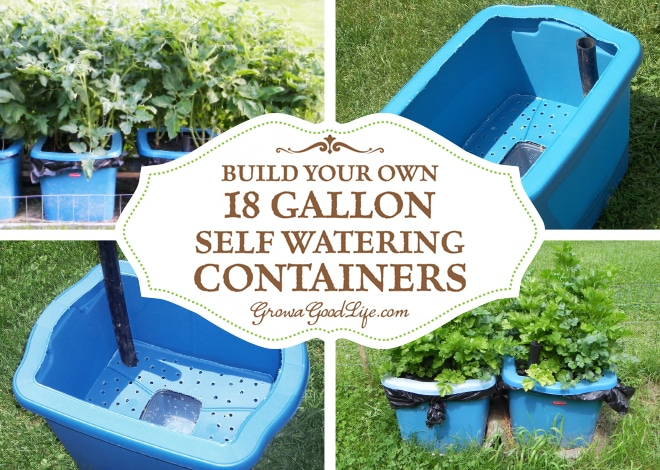 How to build a diy self watering container gardening system ask home design - Diy self watering container garden ...