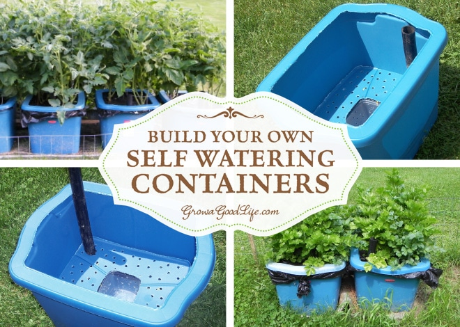 build your own self watering containers. Black Bedroom Furniture Sets. Home Design Ideas