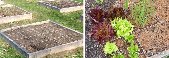 A square foot garden is a quick and easy way to begin or expand your garden. The method is simple to understand and makes it easy to plan your growing beds.