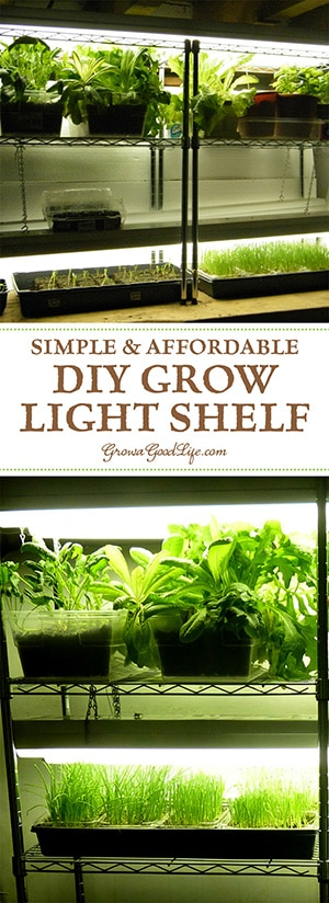 Build a grow light system for starting seeds indoors growing plants indoors is an enjoyable project for any gardener whether you want to grow workwithnaturefo