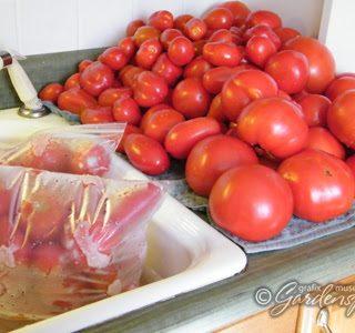 Preserving the Harvest: Tomato Sauce