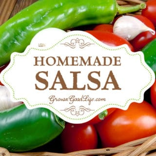 Homemade Fresh Salsa