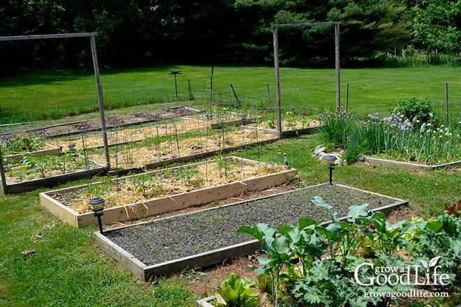 Grow a Good Life 2015 Garden