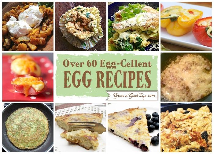 Egg-Cellent-Egg-Recipe-1-10