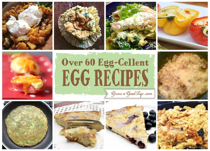 Egg Cellent Egg Recipe 1 10 Over 60 Egg Cellent Egg Recipe Collection from Fellow Bloggers