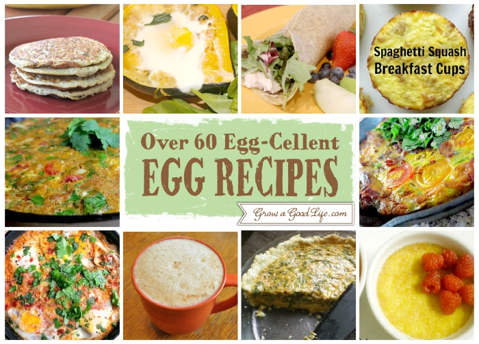Egg Cellent Egg Recipe 11 20 Over 60 Egg Cellent Egg Recipe Collection from Fellow Bloggers