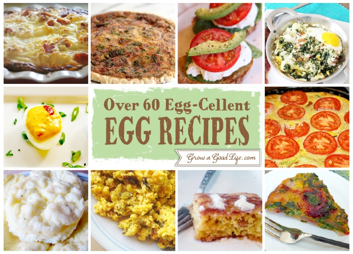 Egg Cellent Egg Recipe 21 30 Over 60 Egg Cellent Egg Recipe Collection from Fellow Bloggers