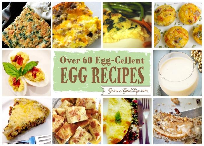 Egg-Cellent-Egg-Recipe-31-40