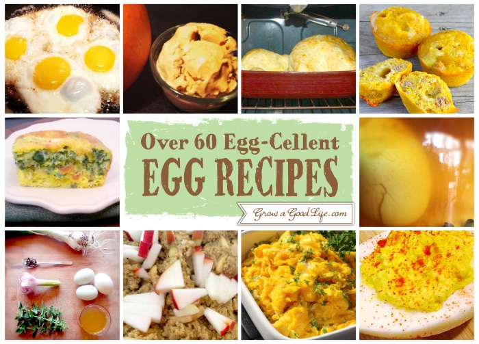 Egg Cellent Egg Recipe 41 50 Over 60 Egg Cellent Egg Recipe Collection from Fellow Bloggers