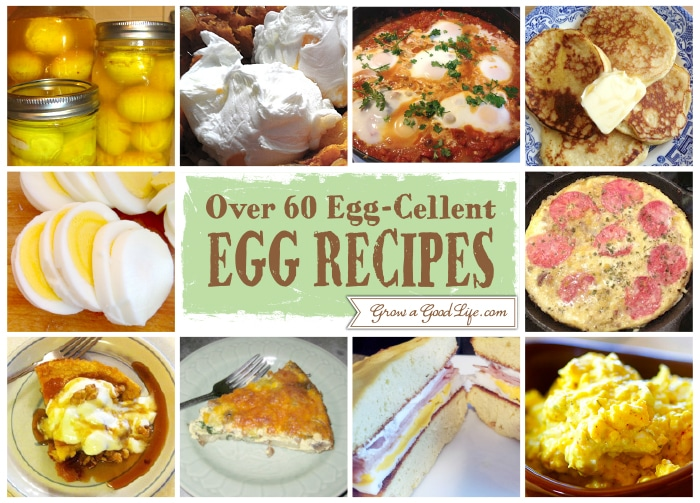 This egg recipe roundup includes a variety of nutritious meals made with eggs. Explore egg recipes from breakfast to dinner and a few snacks as well.