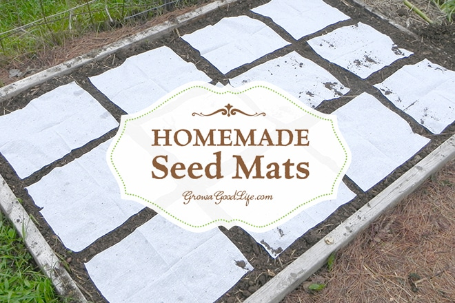Seed mats are helpful for planting tiny seeds, such as lettuce and carrots that are hard to sow one at a time. Instead of scattering seeds then thinning later, creating seed mats allows you to space out the seeds according to the suggested spacing on the back of the seed package or Square Foot Garden spacing recommendations.