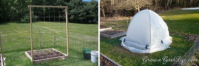 If you are just starting a garden or want to expand, the Square Foot Garden method is worth considering - No digging or tilling required.