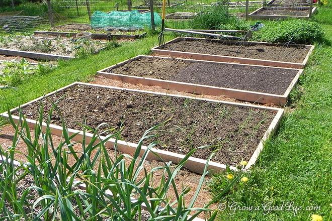 framed-garden-beds-growagoodlife