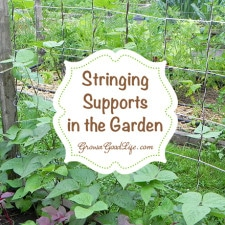 stringing-supports-growagoodlife