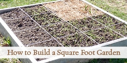 top-build-square-foot-garden-photo