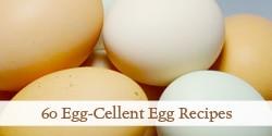 top-egg-cellent-egg-recipies-photo