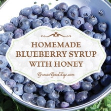 Homemade Blueberry Syrup with Honey | Grow a Good Life