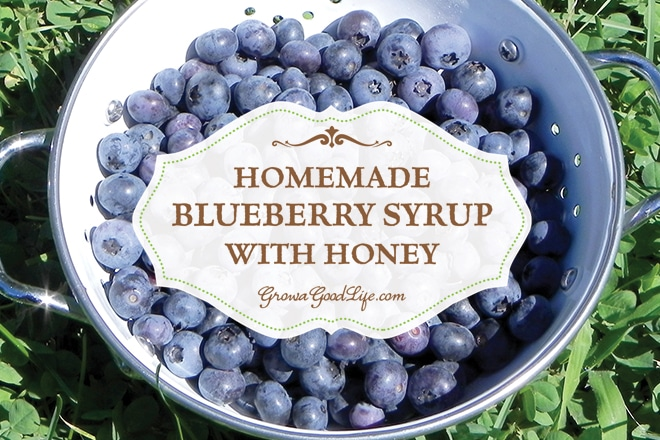 Homemade Blueberry Syrup with Honey