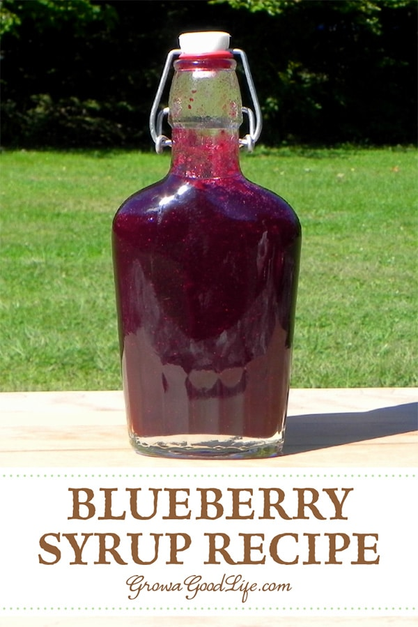 Honey Sweetened Blueberry Syrup: This homemade blueberry syrup sweetened with honey lets the true fruit flavor stand out. Enjoy in tea, on pancakes, in yogurt, and as an ice cream topping.