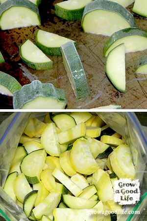 freeze-zucchini-photo