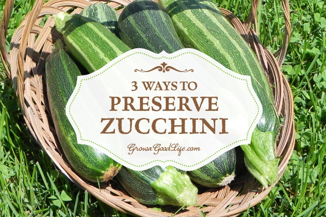 3 Easy Ways to Preserve Zucchini