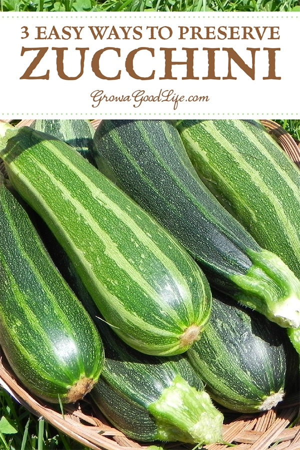 Is your garden overflowing with zucchini? Learn the many ways you can preserve zucchini so you can enjoy the abundant harvest during the winter months