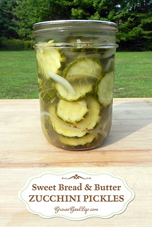 Bread and Butter Zucchini Pickles Recipe: This recipe for sweet and sour pickles features turmeric in the simple brine. A great way to preserve zucchini.