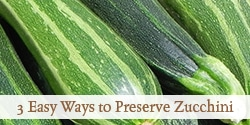 3 Easy Ways to Preserve Zucchini