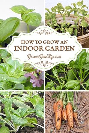 How to Grow an Indoor Garden   Grow a Good Life
