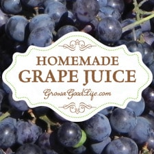 Homemade Concord Grape Juice | Grow a Good Life