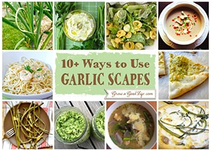 10 Ways to Use Garlic Scapes | Grow a Good Life