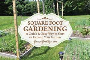 Square Foot Garden: A Quick & Easy Way to Begin a Garden | Grow a Good Life