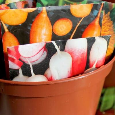 seed packages in a flower pot