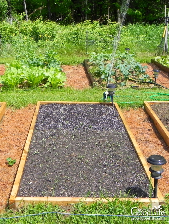 image of a raised bed vegetable garden