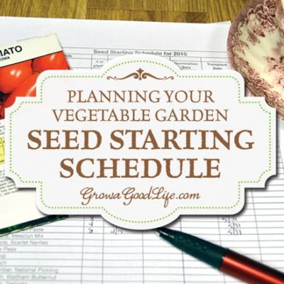 A seed-starting schedule provides a guideline of when to sow seeds and when to transplant seedlingsto your vegetable garden.