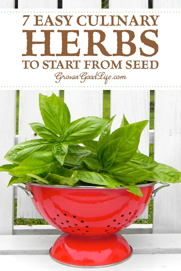 Herbs are a great addition to the garden and can be grown in a designated herb plot, among your other vegetables, intermingled in your flowerbed, or even in containers. Read on for tips on growing herbs from seed and 7 easy culinary herbs to begin your herb garden.