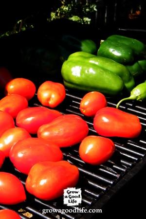 Grilled Tomato Salsa | Grow a Good Life