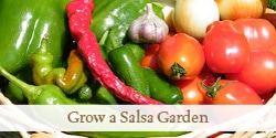 Grow a Salsa Garden | Grow a Good Life
