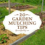20 Garden Mulching Tips from Seasoned Growers