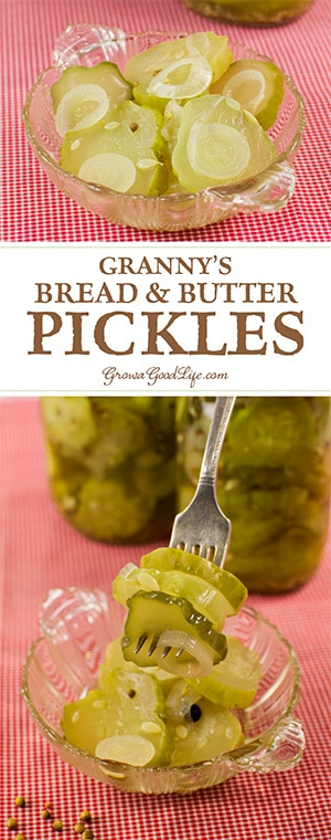 These bread and butter pickles have a crisp texture and a balanced sweet and sour flavor. The sweet and tangy crunch is irresistible.