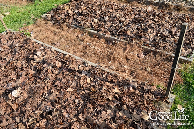 Mulch Is Any Type Of Material That Layered On The Surface Of The Soil.  Mulching