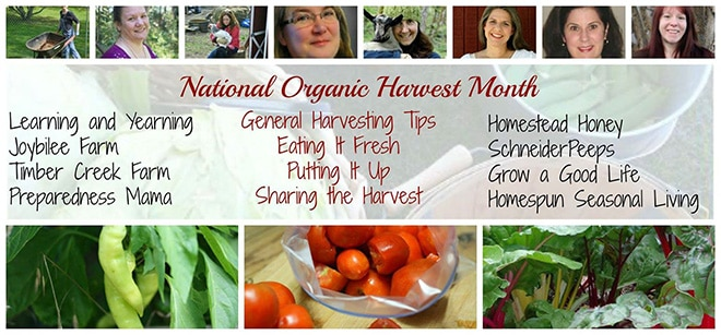 September is National Organic Harvest Month and to help you make the most of your harvests, I've teamed up with these other amazing bloggers. Please be sure to check out their tips and more!