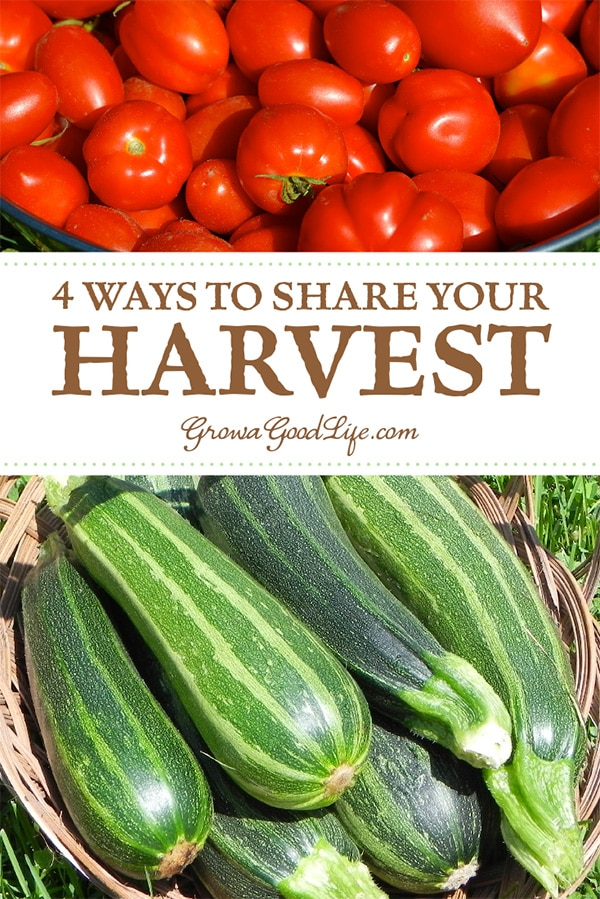 What do you do with a bumper crop? Here are some ways to share the garden harvest bounty instead of tossing the extras into the compost bin.