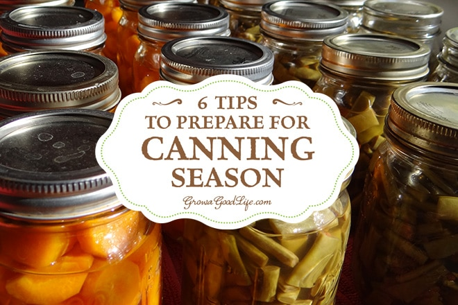 This time of the year finds the kitchen counters piles high with tomatoes waiting to be turned in to tomato sauce and salsa, the refrigerator's crisper draws are crammed with string beans and carrots ready to be pressure canned, and cucumbers waiting to be turned into pickles. Yup, it is officially canning season. It can be overwhelming at times but here are some strategies to prepare for canning season.