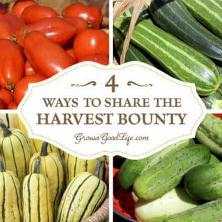 4 Ways to Share the Garden Harvest Bounty
