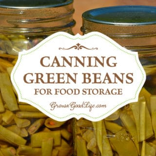 Canning Green Beans for Food Storage