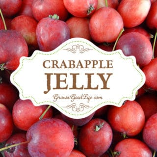 Homemade Crabapple Jelly with No Added Pectin