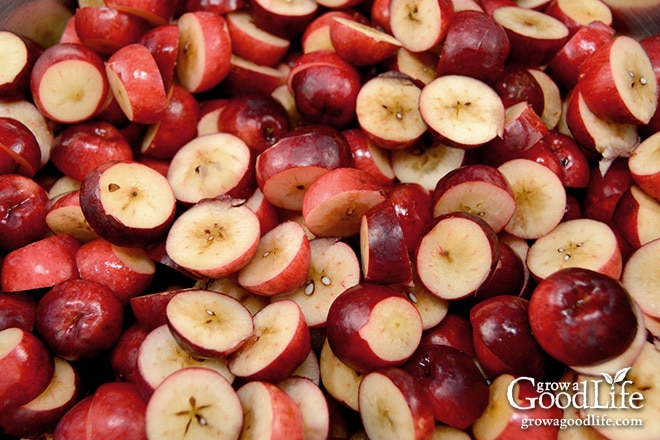 Crab Apple Recipe