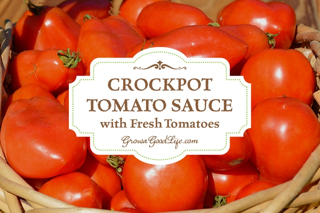 This simple crockpot tomato sauce is something that I rely on often during the peak of the tomato harvest. While the majority of the tomatoes from the garden are preserved in large batches for winter food storage. The crockpot is perfect for making smaller batch for fresh eating. It takes little effort to fill the crockpot up with all the ingredients and let it simmer all day. You can even break up the process over a few days if you are crunched for time by refrigerating the sauce part way through and start cooking again the next day.